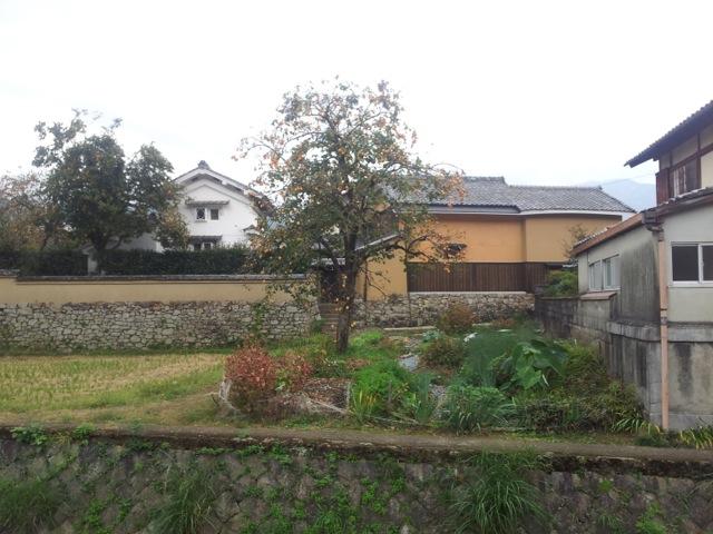 iwakura_sato2